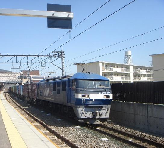 DSC02049.JPG
