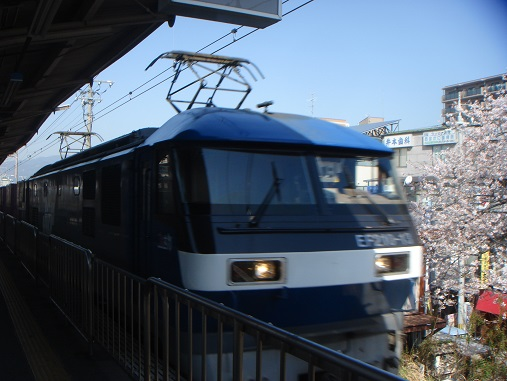 DSC02163.JPG
