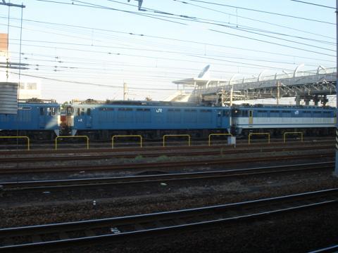 DSC05359 75.JPG
